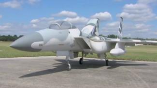 Michael Sarysz: F 15 Strike Eagle