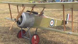 Rick Cawley: Pup Aircraft