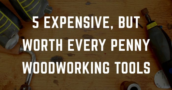 5 EXPENSIVE, BUT WORTH EVERY PENNY WOODWORKING TOOLS