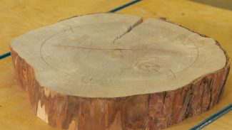 Woodworking Videos Classes More Woodworkers Guild Of America
