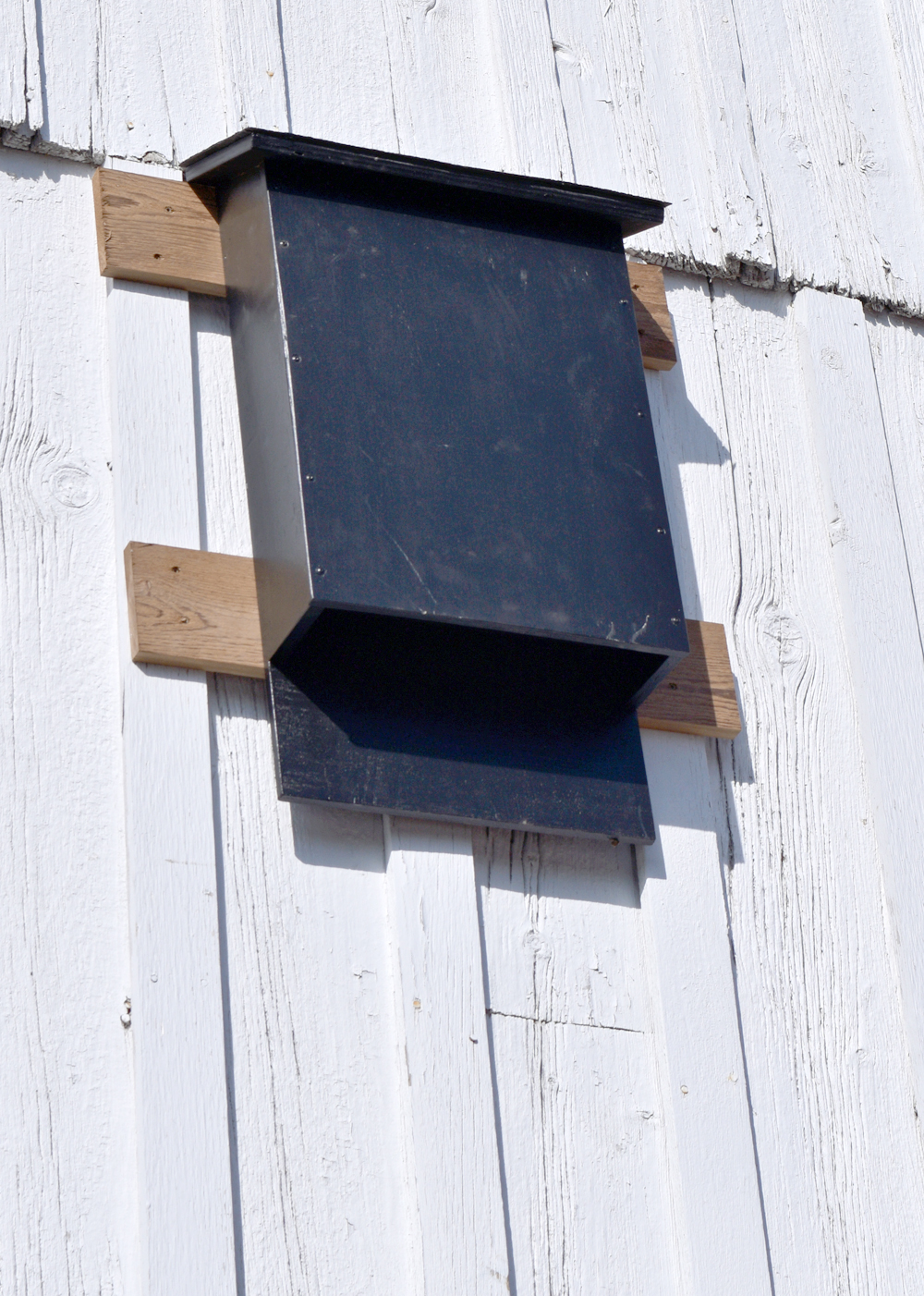How to build a bat house woodworkers guild of america for Build a home